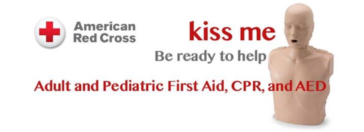 Life Saving Training Institute Adult And Pediatric First Aidcpraed